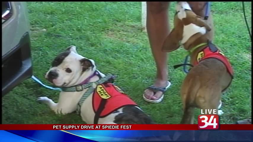 NewsChannel 34 looks to help animals find forever homes_45340924