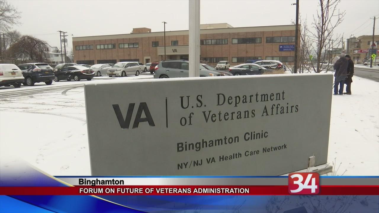 VA health care may be privatized
