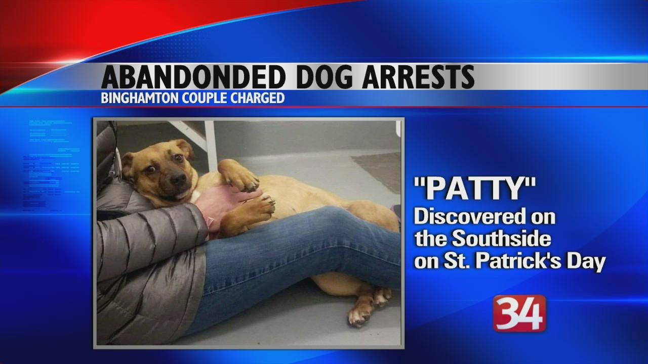 Abandoned Dog on Southside